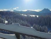 Die Roner Alm  Urlaub in Südtirol auf der Rodenecker Alm (1)