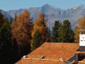 Die Roner Alm  Urlaub in Südtirol auf der Rodenecker Alm (2)