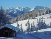 Die Roner Alm  Urlaub in Südtirol auf der Rodenecker Alm (3)