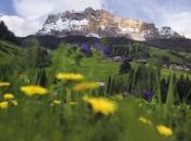 Alta Badia bietet weitläufige Almen und Blumenwiesen für sommerliche Wanderungen vor der Kulisse am berühmten Sellastock.