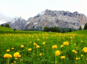 armentara-wiesen-zehnerspitze