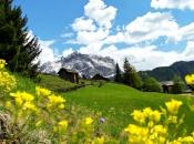 Der imposante Heiligkreuzkofel vor blühenden Almen in Alta Badia