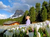 Frühling in den Eisacktaler Bergen, im Hintergrund der imposante Peitler Kofel