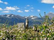 Kirchlein von Viums inmitten der Apfelblüte, im Hintergrund die mächtige Wilde Kreuzspitze