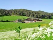 fegerhof-kastelruth-hof