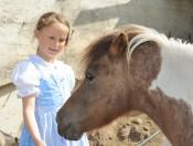fegerhof-kastelruth-pony