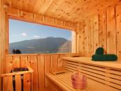 froetscherhof-brixen-sauna-mit-aussicht1