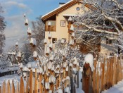 froetscherhof-brixen-winter2