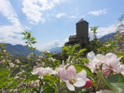 Frühlingsurlaub Südtirol