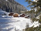gallfall-alm-gsiesertal-winter