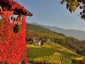 Herbsturlaub in Südtirol