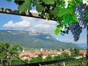Im Süden Südtirols