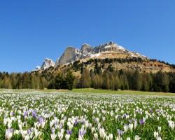 Große Dolomitenrunde