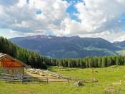 Ferien auf der Kleinalm im Vinschgau – Leben im Einklang mit der Natur