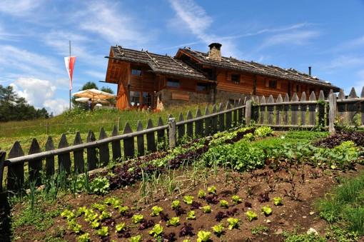 kreuzwiese-luesen-garten