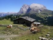 Bauernhofurlaub im Ferienparadies Seiser Alm - Der Maloarhof in Seis am Schlern