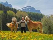 niglutschhof-kastelruth-pferdehof