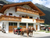 oberauerhof-ridnaun-pferdehof