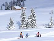 penegalhof-kaltern-winter