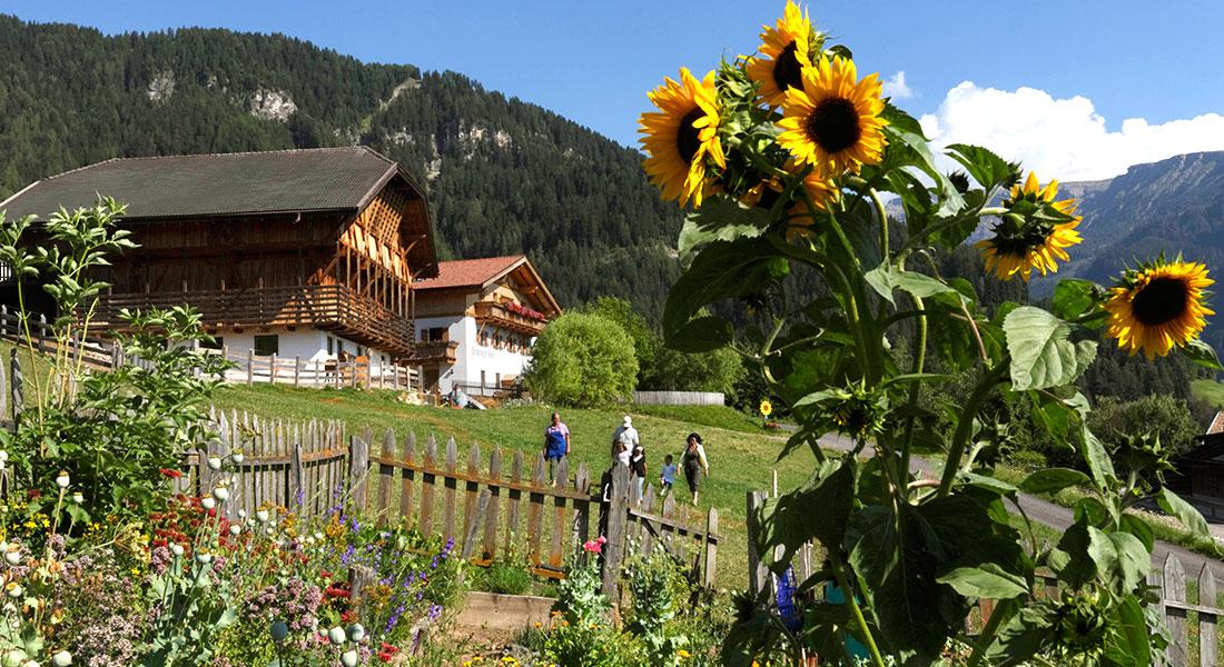 Der Pristingerhof im wunderschönen Südtirol