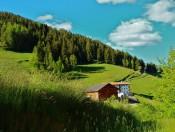 putzerhof-villnoess-bauernhof