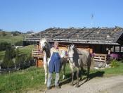 Bauernhofurlaub Kastelruth -  Almhütte und Bauernhof Seiser Alm/ Südtirol
