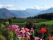 Wanderurlaub in Südtirols Süden - Ferienwohnungen Eppan