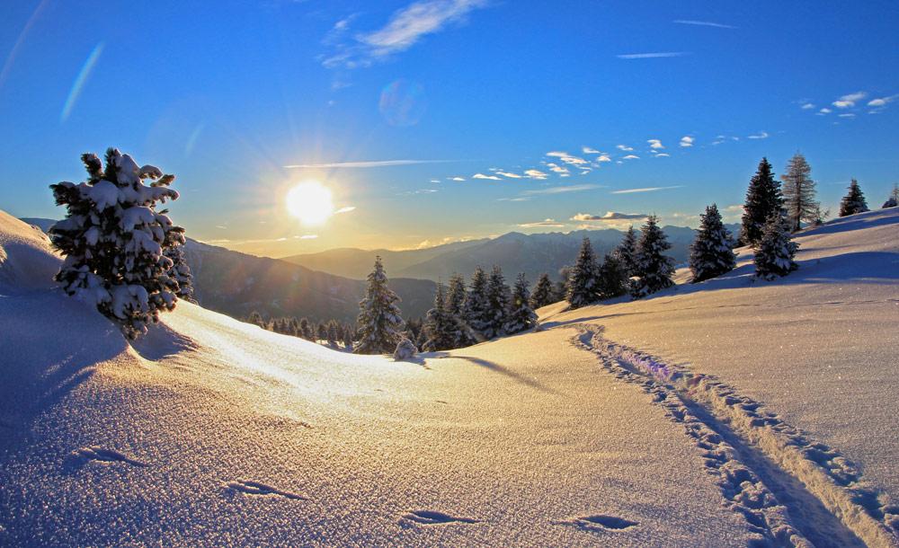 Winterwandern mit und ohne Schneeschuhe