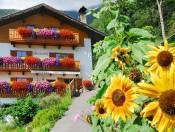 stocknerhof-brixen-bauernhof