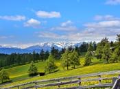 soltn-fruehling-richtung-meraner-land