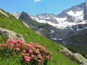 ahrntal-zur-roetspitze