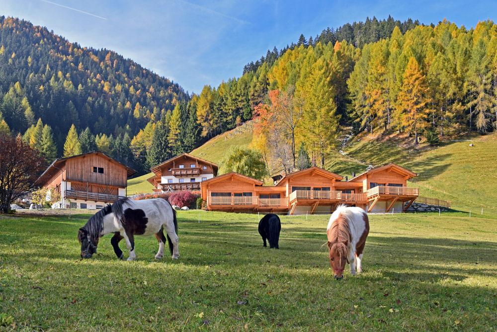 Bauernhofurlaub mitten in einer herausragenden Ferienregion