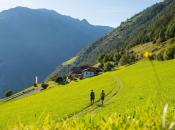 Wandern-Wiesenweg-Landschaft,-TG-Naturns,-Thomas-Grüner