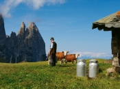 tradition-seiser-alm