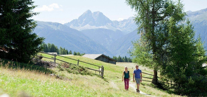 Die Roner Alm | Urlaub in Südtirol auf der Rodenecker Alm