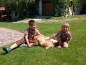 wieshof-lajen-spielen-mit-hund