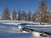 wietererhof-jenesien-winter
