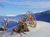 alte-schneeschuhe-winter