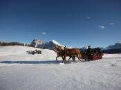 pferdeschlittenfahrt-seiser-alm