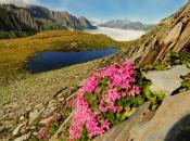 Bergsee in der Nähe vom Pfitscher Joch