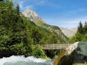 wildbach-pflersch-tribulaun